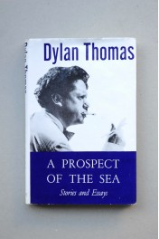 A prospect of the sea , and other stories and prose writings